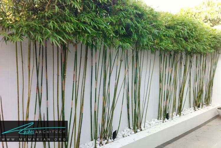 طراحی فضای سبز خانه های ویلایی با المان های مختلف