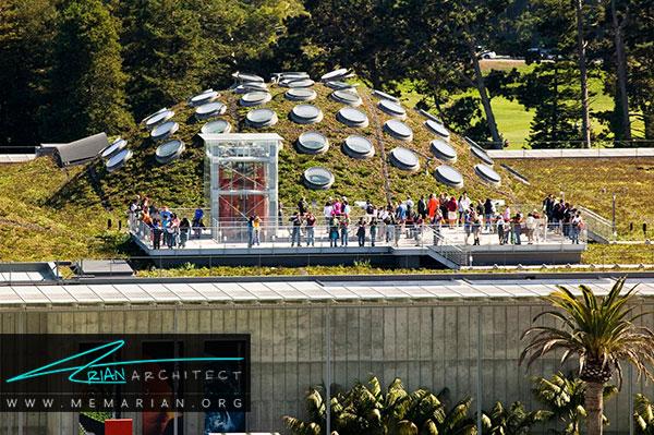 آکادمی علوم کالیفرنیا، مهم ترین اثر رنزو پیانو