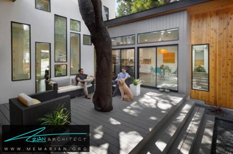 خانه درختی مدرن آستین توسط شرکت معماری ام اف- معماری بدون قطع درخت