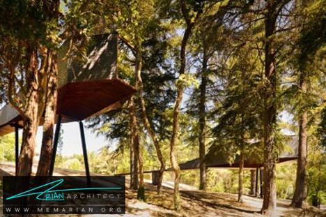خانه درختی مار (!) در یک پارک کشور پرتغال - معماری بدون قطع درخت