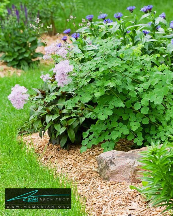مالچ برای محافظت از گیاهان - ایده ها و راهکارهای زیباسازی حیاط منزل با پوشش گیاهی