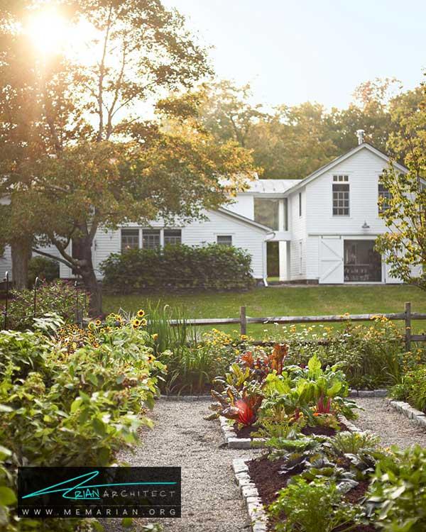 کشت محصولات غذایی در حیاط خانه - ایده ها و راهکارهای زیباسازی حیاط منزل