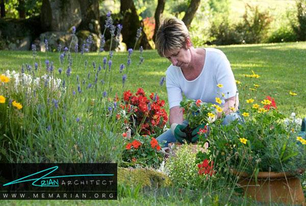 کشت گل و گیاه - طراحی باغچه ارگانیک در حیاط خانه