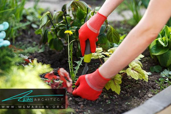 کندن علف های هرز باغچه - طراحی باغچه ارگانیک در حیاط خانه
