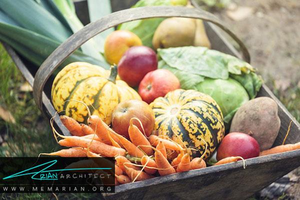 برداشت محصولات باغچه - طراحی باغچه ارگانیک در حیاط خانه