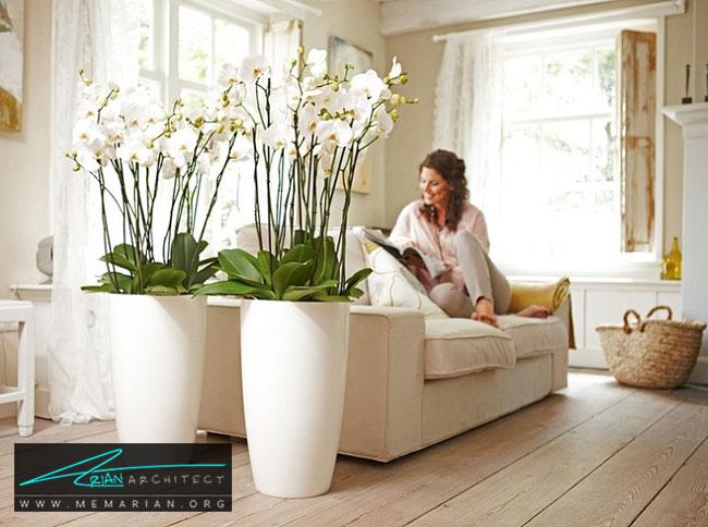 محل مناسب گلدان ها در دکوراسیون - چگونگی استفاده از گلدان برای دکوراسیون داخلی
