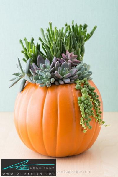کدو تنبل گلدانی -دکوراسیون هالووین