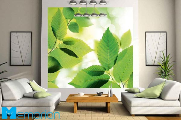 تاثیر رنگ سبز در دکوراسیون | دکوراسیون رنگ سبز (2)