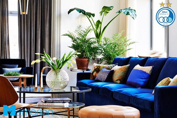 مبلمان آبی جذاب در کنار گیاهان در یک خانه استقلالی